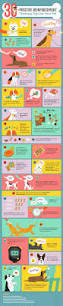 boxer dog training tips dog training tips why positive reinforcement training is best