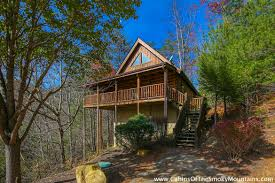bedroom simple pigeon forge 1 bedroom cabins designs and colors
