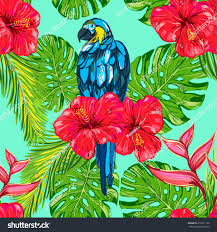 flowers and plants beautiful seamless floral pattern background parrot stock vector