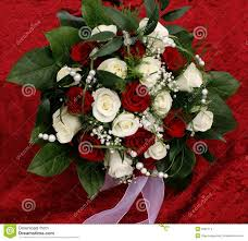 beautiful marriage wishes wedding wishes stock photo image of bridal flower 5696714
