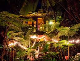 Real Treehouse Hawaii Wedding Treehouse Be Married Here U2026in The Hawaii Rain