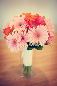 300 best gerbera arrangements images on pinterest gerbera daisy