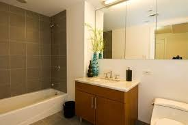 simple bathroom renovation ideas simple bathroom remodel ideas surprising design 4 small gnscl