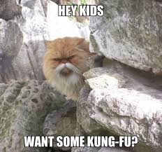 Fu Meme - hey kids want some king fu justpost virtually entertaining