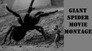 giant spider movie montage youtube