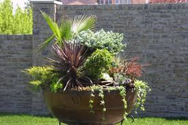 container gardening designs ideas we can choose for our flower