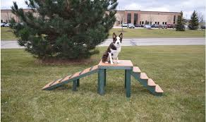 top dog bridge stairs and ramp barco products