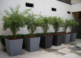 why fiberglass planters are best for indoors and outdoors