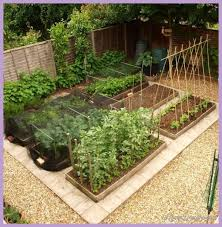 Permaculture Vegetable Garden Layout 10 Permaculture Garden Design Ideas 1homedesigns