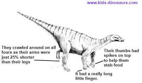 iguanodon fun facts kids