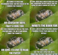 Cute Spider Meme - 1227 best cool insects bugs images on pinterest butterflies