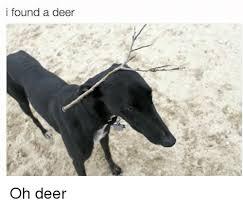 Oh Deer Meme - i found a deer oh deer deer meme on conservative memes
