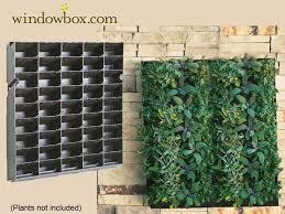 How To Build A Vertical Garden - best 25 living wall planter ideas on pinterest garden wall