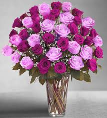 purple roses for sale vase with 100 pink purple roses