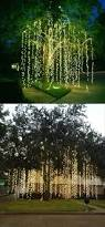 best 25 outdoor tree lighting ideas on pinterest outdoor