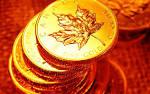 Canada Gold Wallpaper (wallpapers canada gold Best top desktop golden picture 2013hdwallpapers blogspot 1600x1000)