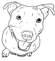 breathtaking drawings of pit bulls coloring pages drawings of pit