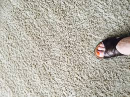 How To Stop Mold In Basement by Top 4 Ways To Prevent Carpet Mold