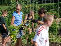 Club Summer Garden - summer garden club camp a success city schoolyard garden