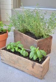 diy herb garden herb garden with vintage boxes