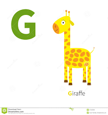 english animals zoo alphabet stock vector image 63106625