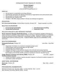 exle debutante biography 14 best resume sles images on pinterest sle resume public