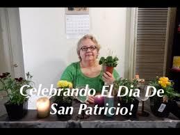alicia psquica celebrando el dia de san patricio youtube