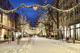 christmas lights tour limo service in portland or pdx limo service