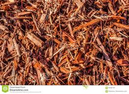 Landscaping Wood Chips by Wood Chips Mulch Or Beauty Bark Stock Photo Image 84692726