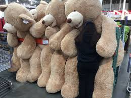 Costco Standing Desk by Giant Teddybear At Costco Human For Scale Imgur Things I Want