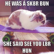 Angry Bunny Meme - bunny on skateboard very funny meme picture