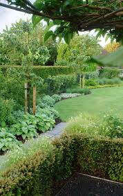 Backyard Trees Landscaping Ideas by