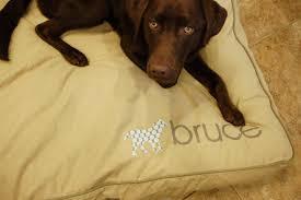 Ll Bean Dog Bed Ll Bean Dog Bed Modern Home