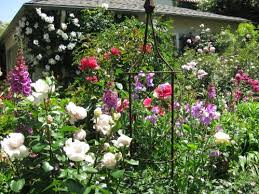 Types Of Planting Flowers - different type of flowers perennial annual spring summer fall