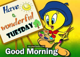 tweety bird good morning tuesday quote pictures photos