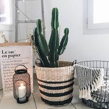Miroir Industriel Maison Du Monde by Home Inspiration Cactus Echelle En Bois Maisons Du Monde