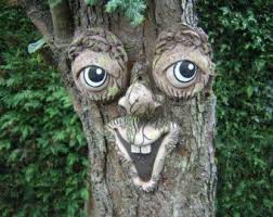 25 unique tree faces ideas on scrub for