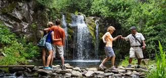 Hawaii forest images Kohala waterfalls adventure hawaii forest trail jpg