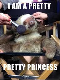 Funny Sloths Memes - sloth meme google search sloths pinterest sloth meme and google