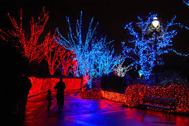 oregon zoo lights 2017 the oregon zoo is offering the following deals in conjunction with