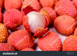 lychee fruit candy lychee fruit lychee chinese chinese plum stock photo 360085367