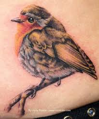 the 25 best red bird tattoos ideas on pinterest watercolour
