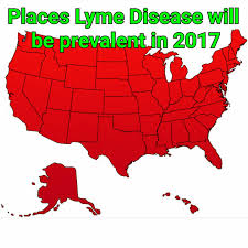 Lyme Map Brew Life With Lyme