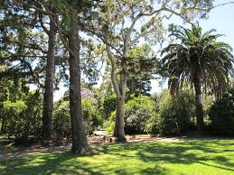 Williamstown Botanic Gardens Williamstown Botanic Gardens All You Need To Before You Go