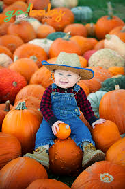 pumpkin patch maternity nathan s pumpkin patch adventure mccardell photography