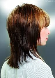 hair with shag back view back view layered hairstyle love love love layered long haircut