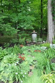 the story of daniela u0027s shady garden path in ohio 8 photos fine
