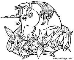 Coloriage licorne dans une couronne de fleur  JeColoriecom