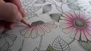 secret garden colouring book postcards secret garden how i colour a flower