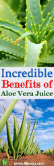 best 25 aloe juice benefits ideas on pinterest cranberry health